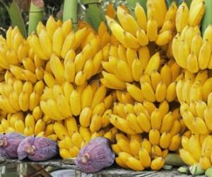 ฝันเห็นกล้วย
