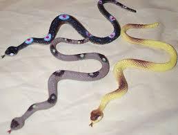 ฝันเห็นงู-3-ตัว