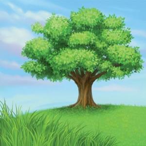 ฝันเห็นต้นไม้