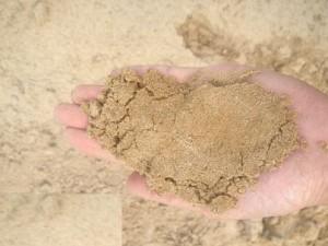 ฝันเห็นทราย